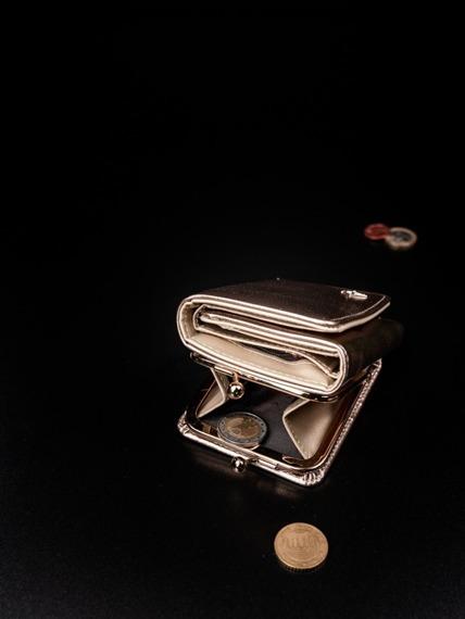 Portmonetka damska na bigiel złota Milano Design